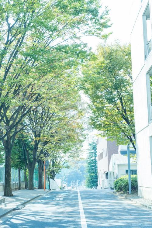 YurikoOmuraPhoto07